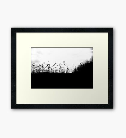 Poland - forest in motion Framed Print