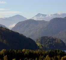 Austrian Landscape by phil decocco