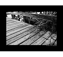 Cedar Town Beach Wooden Pier Detail - Mount Sinai, New York Photographic Print