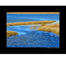 Shinnecock Bay Detail - Hampton Bays, New York  Photographic Print