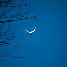new moon by Paul Kavsak
