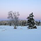 Trees, Sjusjøen by Algot Kristoffer Peterson