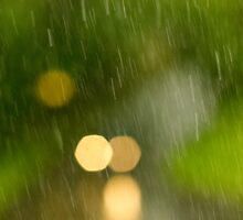 Rainy day by Barry Robinson