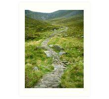 Mountain Path, Ireland Art Print
