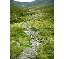 Mountain Path, Ireland Photographic Print