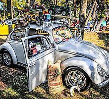 Volkwagon Beetle by Chris L Smith