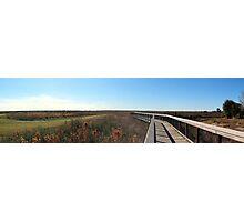 Paynes Prairie Panorama Photographic Print