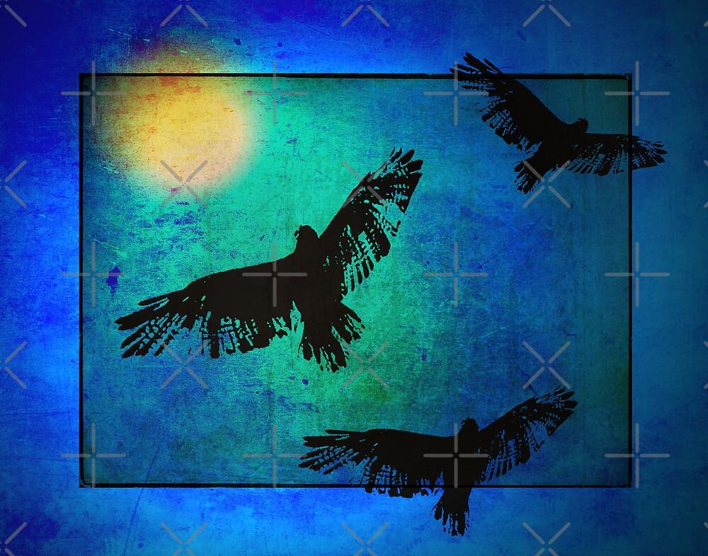 Putting Boundaries On Freedom by CarolM