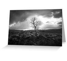 Defiant Tree Greeting Card