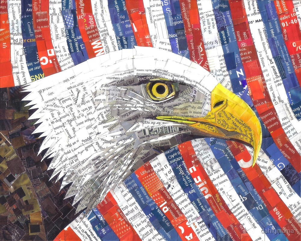 North American Bald Eagle by SRowe Art