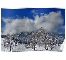 Snowy Trees And The Flatirons Boulder Colorado Poster