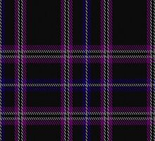01001 Clan Inebriated Tartan Fabric Print Iphone Case by Detnecs2013