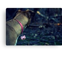 Spring Is For Puppies Canvas Print