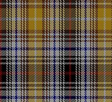 01003 Clanedin/Commonwealth Commemorative Tartan Fabric Print Iphone Case by Detnecs2013