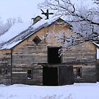 WINTER BARN by Larry Trupp