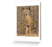 Innocence and youth Greeting Card