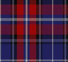 01024 Clinton Tartan Fabric Print Iphone Case by Detnecs2013