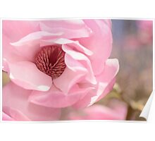 Pastel Pink Petals and Paint Poster