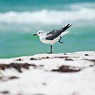 Beach Yoga - 2nd Pose by Barbara Shallue