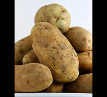 Solanum Tuberosum - Potatoes by © Sophie W. Smith