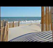 View On Atlantic Ocean Through Wooden Sand Fences - Hampton Bays, New York by © Sophie W. Smith