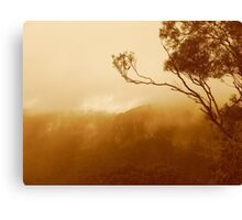 Treetop and fog Canvas Print