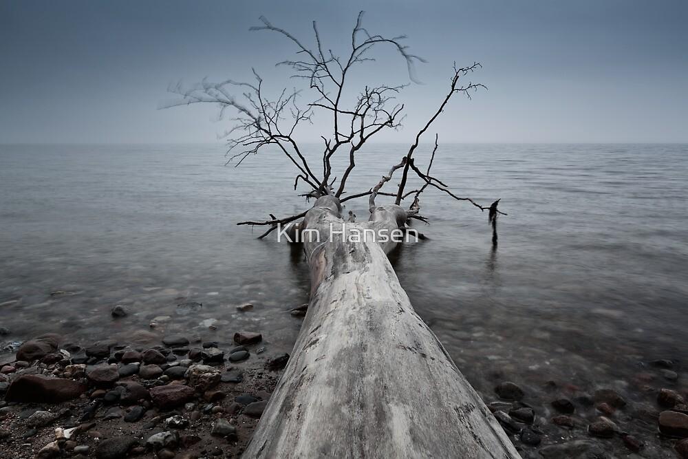 Morning mist by Kim Hansen