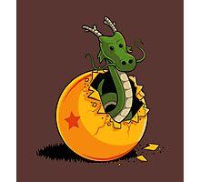 Dragon Egg Photographic Print