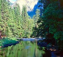 Mountain Pool, Yosemite by Priscilla Turner