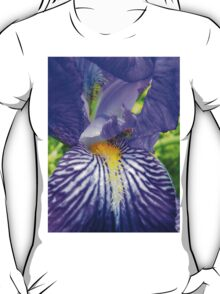 Purple Bearded Iris Monsignor Macro T-Shirt