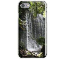 Mt Field Waterfall iPhone Case/Skin