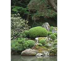 japanese traditional garden view 1 Photographic Print