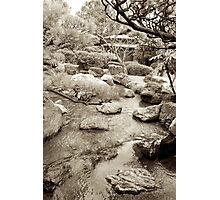 japanese traditional garden view 3 Photographic Print