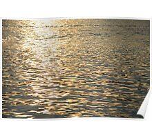 Golden Light On The Potomac River Poster