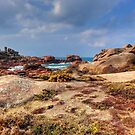The pink granite... (2) by jean-jean