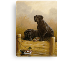 Decoy dawn Canvas Print