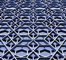 Lattice 1 by photonista