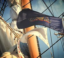 Flags and Mast by DAVID  SWIFT