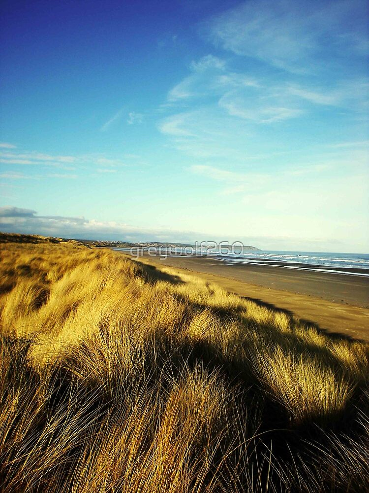 Dune by greywolf260
