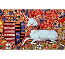 UNICORN WITH RED BLUE FLORAL MOTIFS Photographic Print