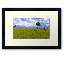 Masai Mara 4 Framed Print