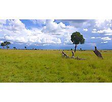 Masai Mara 4 Photographic Print