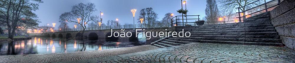 Riksväg 1 - Bridge over Lagan - Värnamo (panorama) by João Figueiredo