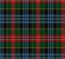 01059 Comyn/Cumming Clan/Family Tartan Fabric Print Iphone Case by Detnecs2013