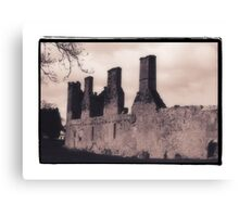 Irish Ruin on the Grounds of Modern Hotel Canvas Print