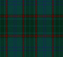 01069 Conion Tartan Fabric Print Iphone Case by Detnecs2013