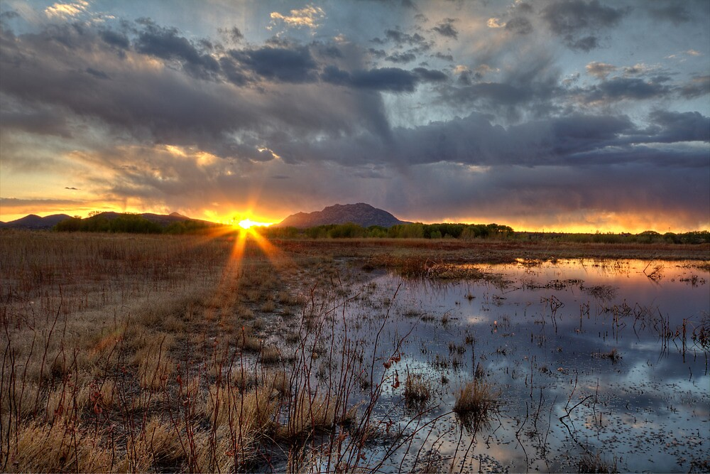 Elements of Sunset 1 by Bob Larson