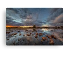 Drench Canvas Print