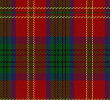01077 Connolly Dress Clan/Family Tartan Fabric Print Iphone Case by Detnecs2013