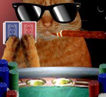 Cat Poker Sticker